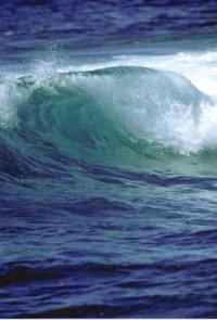 1_wave.jpg